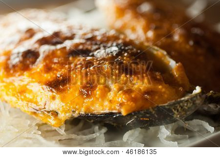 Dynamite japanese dish on a shell