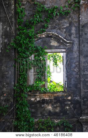 Window in the stone wall