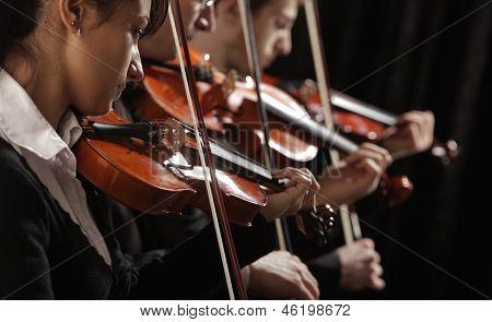 Geiger bei Konzert