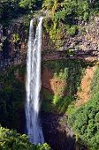 picture of chamarel  - Scenic Chamarel falls in jungle of Mauritius island - JPG