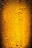 image of condensation  - �??�?�??�?¡lose shot of drops on a bottle beer. - JPG