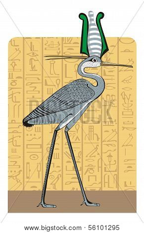 Ibis on Egypt background