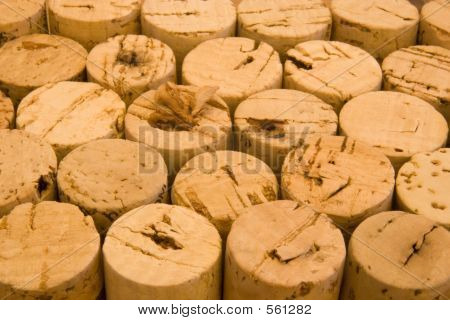 Corks Racked