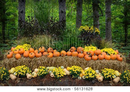 Autumn Outdoor Decor - vibrant