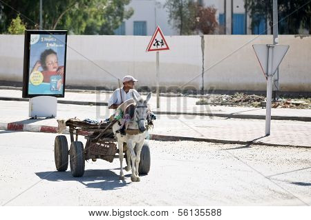 The Carriage On The Streets Of Kairouan