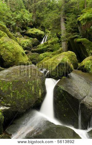 Nature Waterfall  (Triberg - Schwarzwald - Germany)