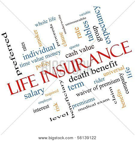 Life Insurance Word Cloud Concept Angled