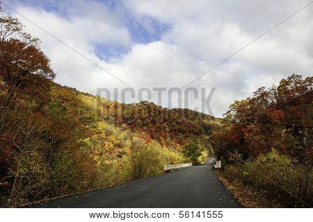 Autumn Mt. Changbai