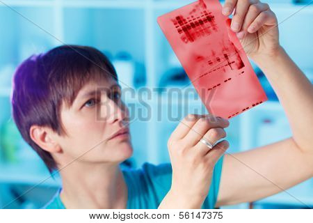 chromatography genetic fingerprinting