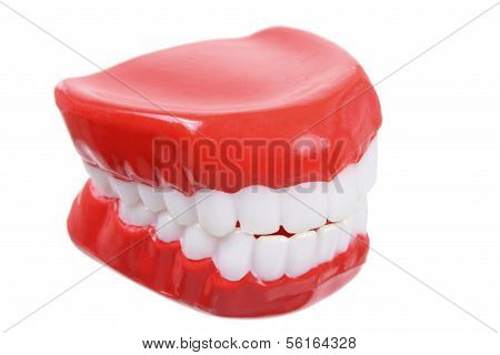Plastic Toy Denture