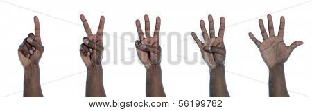 A dark-skinned hand counting from one to five. All on white background.