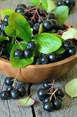 stock photo of chokeberry  - Black chokeberry in brown bowl on wooden table