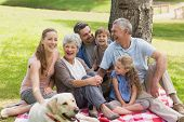 picture of extended family  - Portrait of an extended family with their pet dog sitting at the park - JPG