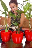 Obsessive Woman Taking Care Of Plant