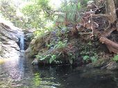 waterfall in forest, western cape