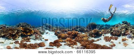 Underwater panorama of the young lady snorkeling over vivid coral reef in tropical sea. Bali Barat National Park, Indonesia