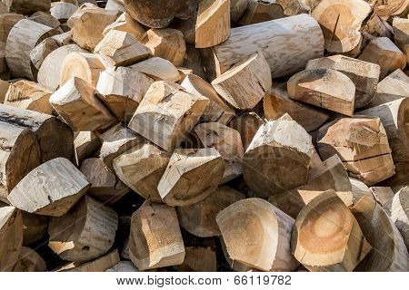 A Pile Of Wood-hewn Logs In The Forest