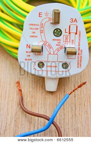 Plug and wires