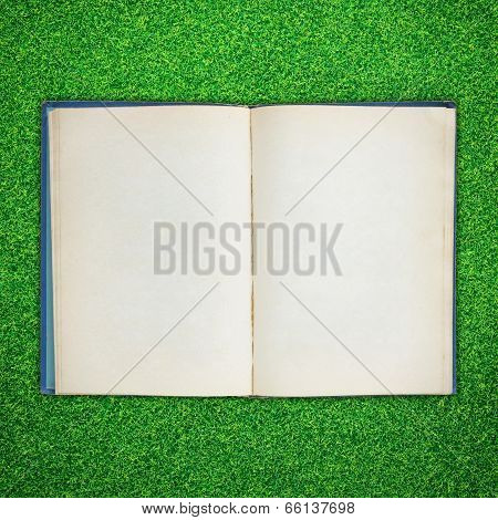Old Book Open On Green Grass Background
