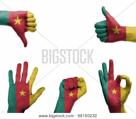 Hand Set With The Flag Of Cameroon