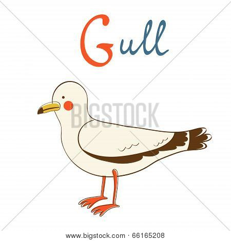 Illustration of G is for Gull