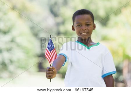 Little boy celebrating independence day in the park on a sunny day