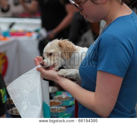 Woman offering treats to her puppy