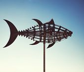 image of wind-vane  - Tuna wind vane - JPG
