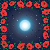pic of moon-flower  - Moon on the sky and field of poppy flowers - JPG