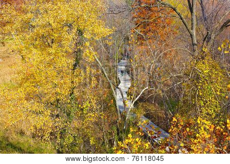 A walkway on Theodore Roosevelt Island Park and colorful trees in autumn Washington DC.