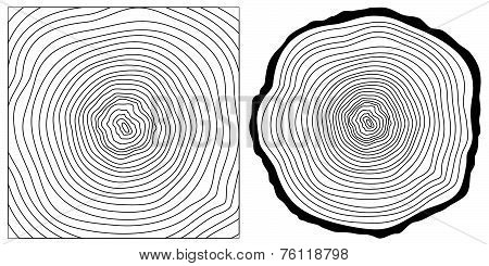 Saw cut tree trun background. Vector.