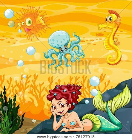 A mermaid under the sea with the other sea creatures