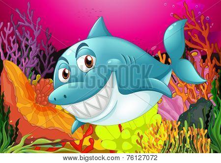 A big fish under the sea