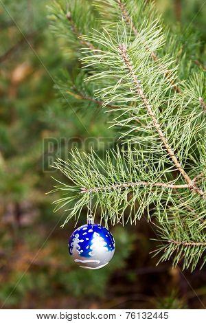 Christmas Little Ball On Branch