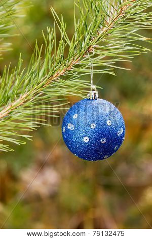 Great Blue Christmas Ball On Branch