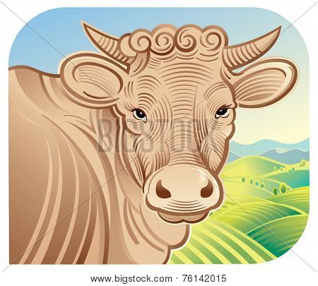 Cow in a landscape