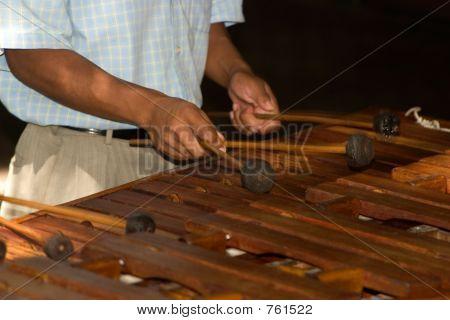 Xylophone Player