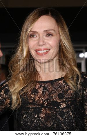 LOS ANGELES - NOV 3:  Vanessa Angel at the Dumb and Dumber To Premiere at the Village Theater on November 3, 2014 in Los Angeles, CA