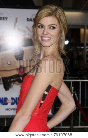 LOS ANGELES - NOV 3:  Rachel Melvin at the Dumb and Dumber To Premiere at the Village Theater on November 3, 2014 in Los Angeles, CA