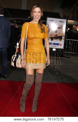 LOS ANGELES - NOV 3:  Melissa Bolona at the Dumb and Dumber To Premiere at the Village Theater on November 3, 2014 in Los Angeles, CA