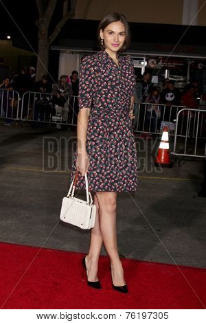LOS ANGELES - NOV 3:  Jennifer Missoni at the Dumb and Dumber To Premiere at the Village Theater on November 3, 2014 in Los Angeles, CA