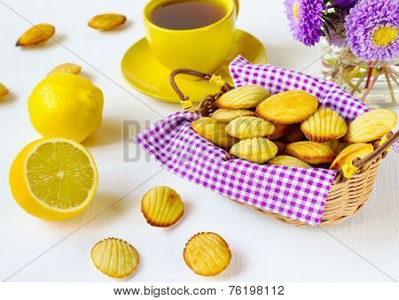 Madeleine's Cookies