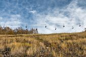 stock photo of wispy  - A ski chair lift sits empty over an alpine meadow during autumn with wispy clouds overhead.