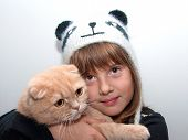 picture of scottish-fold  - Girl in cat hat with a orange scottish fold cat - JPG