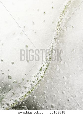 Green Leaf And Air Bubbles