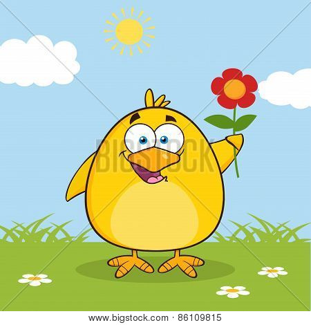 Happy Yellow Chick Cartoon Character With A Red Daisy Flower