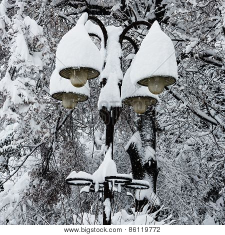 Streetlights Covered With A Thick Snow Layer