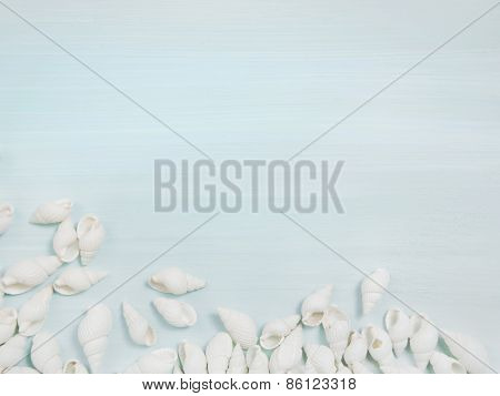 Summer beach background in white and blue with shells.