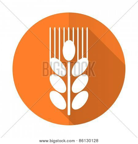 grain orange flat icon agriculture sign