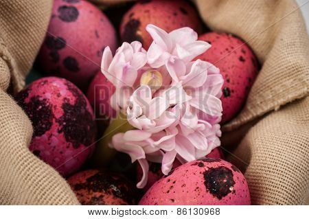 Easter Pink Quail Eggs With Flower In Bag